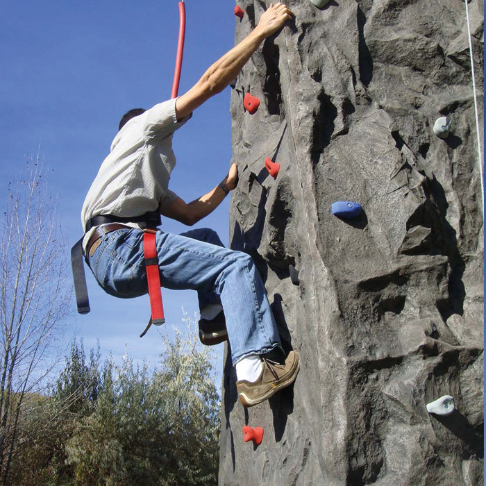 2 Person Mobile Climbing Wall